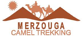 Cammello Merzouga Trekking